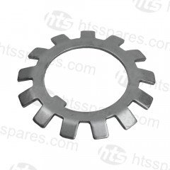 MBR71 Shaft Pulley Lockwasher OEM: 1701-119 (HTL2022)
