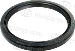 25X38X4 DUST SEAL (HEX0841)